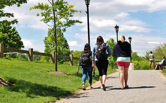 Students walking up a hilly path
